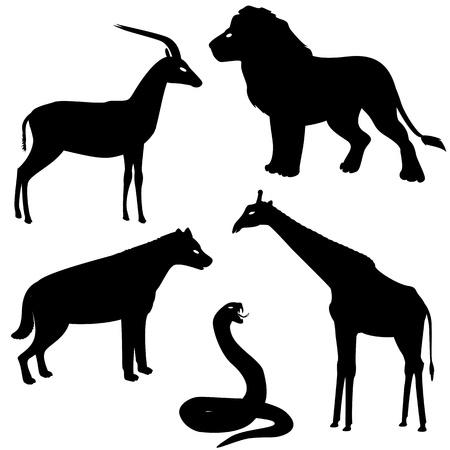 Vector set di 2 africani animali sagome Archivio Fotografico - 19658222