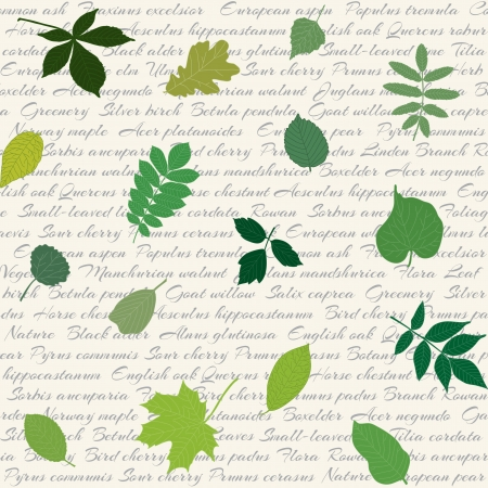 alder: Seamless pattern with hand-drawn leaves and text
