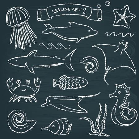 sealife: Sealife Tafel-Set 2 Illustration