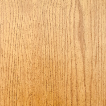 Realistic natural wood texture. Vector background for your design.
