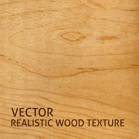 Realistic plywood texture. Vector background for your design.