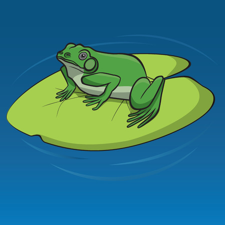 anuran: Green frog sitting on the leaf of water lily in the pond