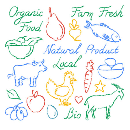 Set of hand drawn farm food icons and lettering Illustration