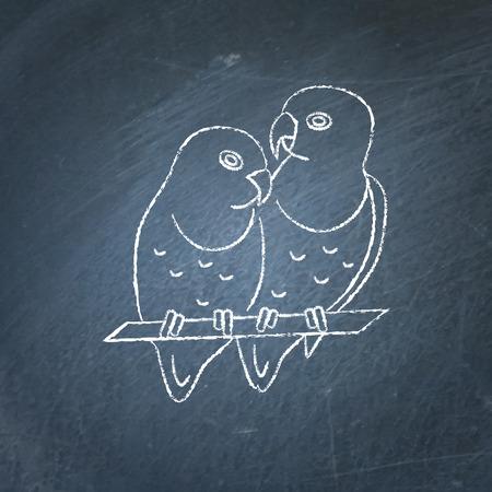 Dwergpapegaaien papegaaien paar pictogram schets op schoolbord. Afrikaans tropisch vogelsymbool dat op bord trekt.