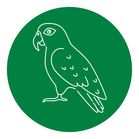 Pionus parrot icon in thin line style