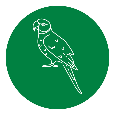 Alexandrine parrot icon in thin line style