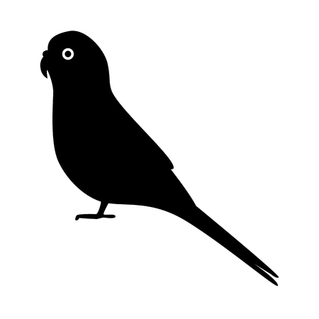 Budgerigar parrot silhouette icon in flat style