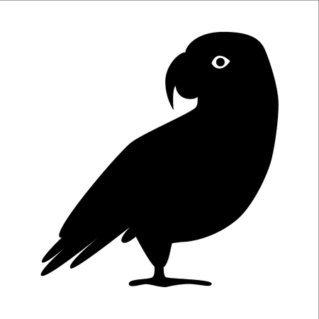 African grey parrot silhouette icon in flat style. Exotic tropical bird symbol on white background