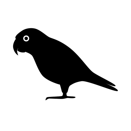 Senegal parrot silhouette icon in flat style Illustration