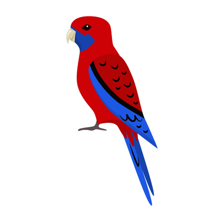 Crimson rosella parrot icon in flat style. Australian tropical bird symbol on white background Çizim