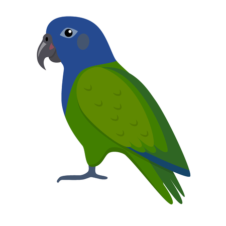 Pionus parrot icon in flat style isolated on white background Illustration