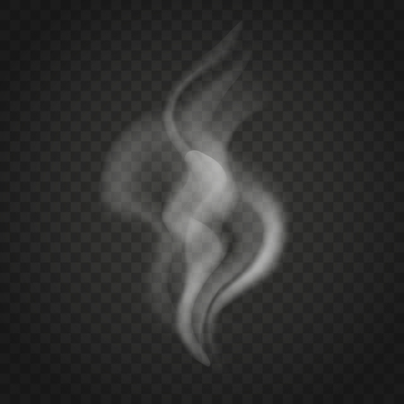 Transparent smoke or steam waves isolated on dark background. Trickles of smoke vector.