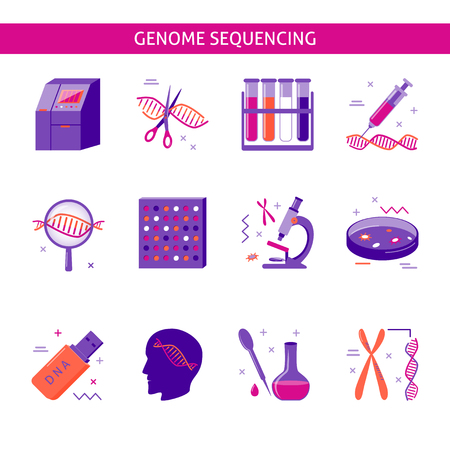 Collection of DNA research icons in flat style. Genome sequencing process symbols isolated on white. Medical illustration.