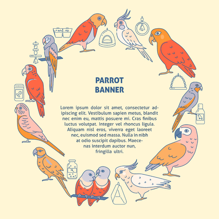 Parrots round concept banner in colored line style 免版税图像 - 120709236