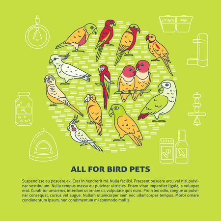 Pet shop round concept banner with parrot icons in line style. Tropical bird symbols poster template with place for text. Vector illustration.