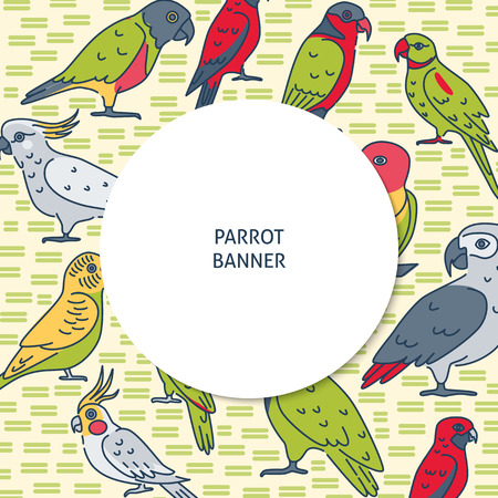 Colorful background with parrot icons in line style. Banner template with tropical bird symbols and place for text. Vector illustration.