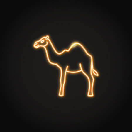 Camel animal icon in glowing neon style