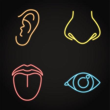 Human sense organ neon icon set in line style