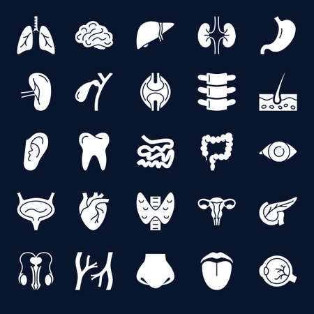 Anatomy icons collection with human internal organs symbols