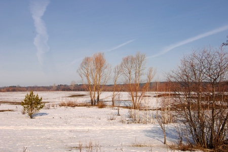 Spring last snow Stock Photo - 14054343