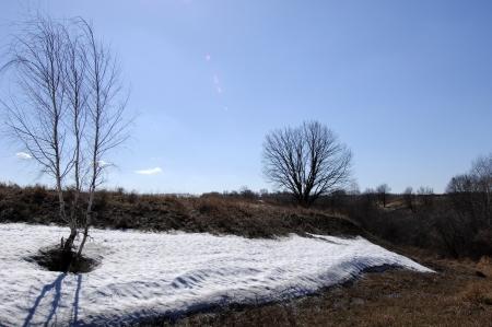 Spring last snow Stock Photo - 14053042