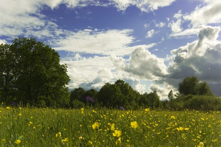 spring Stock Photo - 14053011