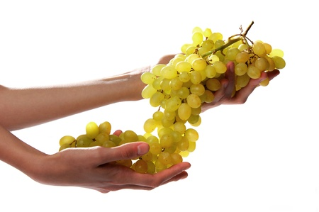holding a bunch of grape Stock Photo