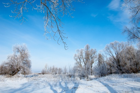 winter Stock Photo - 14047322