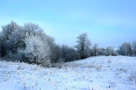 winter Stock Photo - 14045421