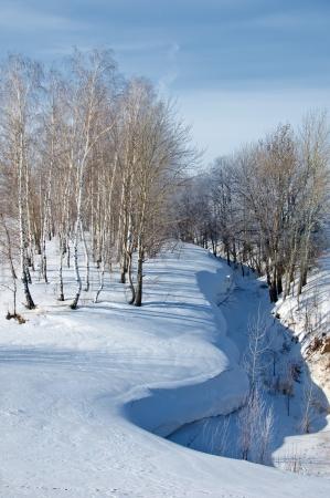 winter Stock Photo - 14054978