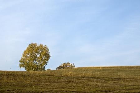 Autumn Stock Photo - 14073128