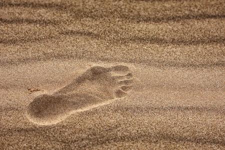 quicksand: sand