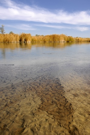 river  Ili Kazakhstan Stock Photo - 14083845