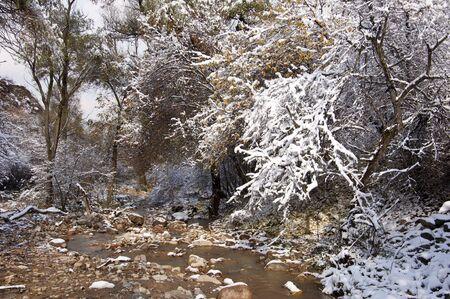 river  Ili Kazakhstan Stock Photo - 14078105