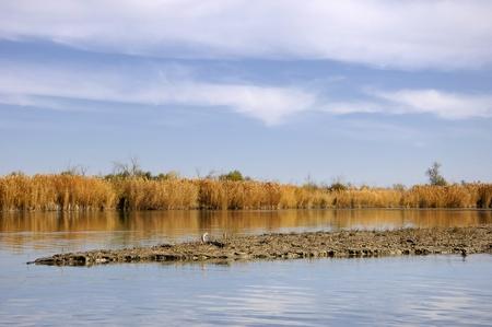 river  Ili Kazakhstan Stock Photo - 14083947