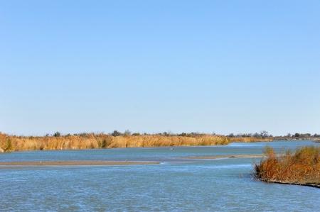 river  Ili Kazakhstan Stock Photo - 14083277
