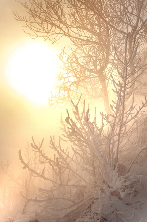 kama: River winter in Russia  Tatarstan Kama Stock Photo