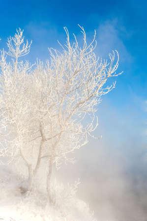 River winter in Russia  Tatarstan Kama Stock Photo - 16888122