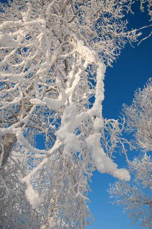 River winter in Russia. Tatarstan Kama Stock Photo - 17075010