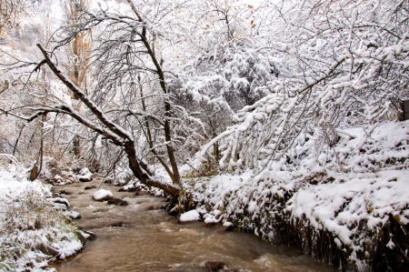 The river first snow photo