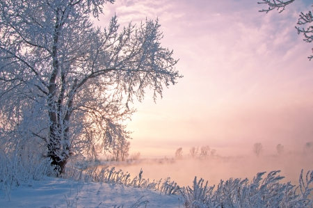 Rivier de winter in Rusland. Tatarstan Kama