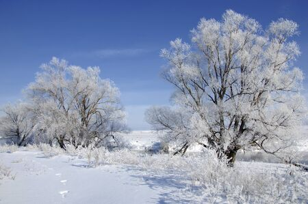 River winter in Russia  Tatarstan Kama photo