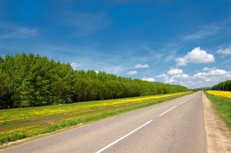 Empty asphalt road with cloudy sky and sunlight. Country road at summer sunny beautiful day. road through forest. Summer travel Stockfoto