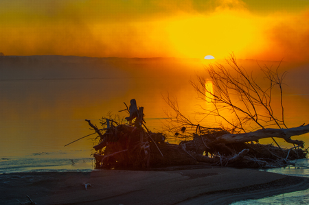 bewitched: sunset at beach