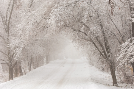 very cold: Winter is very cold, the trees covered with frost Stock Photo