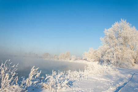 tatarstan: Trees covered with rime, a bright sunny day Stock Photo