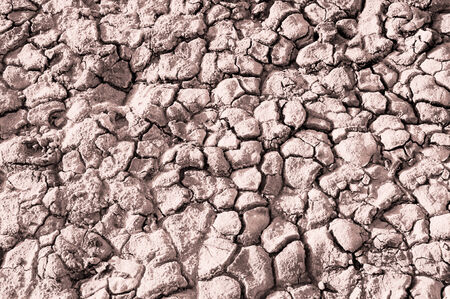 Texture of the salt of the earth. Drought and bright sun created cracks in the ground Stock Photo