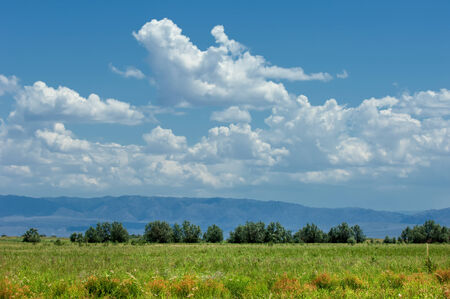 veldt: steppe, prairie, veld, veldt. a large area of flat unforested grassland in southeastern Europe or Siberia.