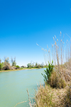 effluent: river, stream, flood, effluent, ford, nulla. a large natural stream of water flowing in a channel to the sea, a lake, or another such stream.
