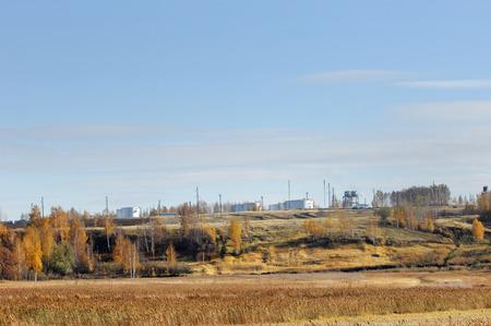 Plant oil. ecology. blue Sky photo